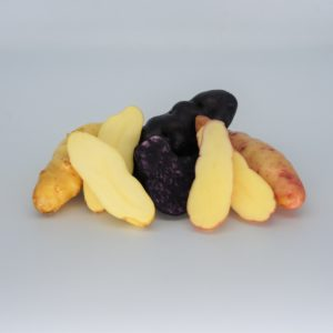 Fingerling Trio - La Ratte, Pink Fir Apple, Vitelotte - 2020 The Potato Shop