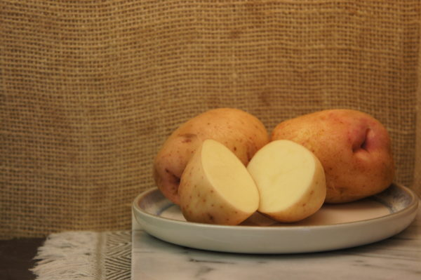 Kerr's Pink Potatoes Harvest 2019