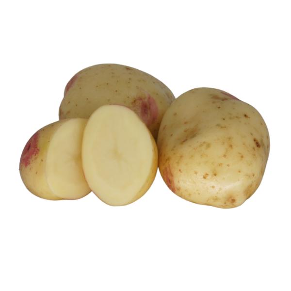 King Edward 2021 The Potato Shop
