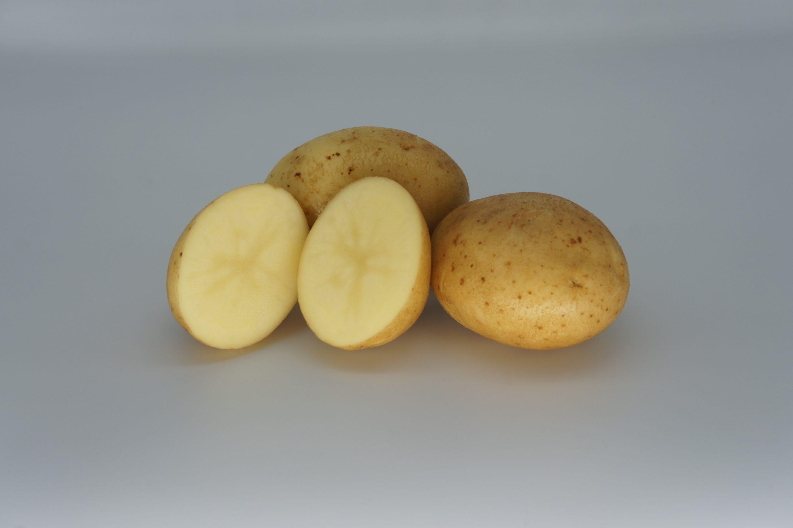 Estima Bakers 2020 The Potato Shop