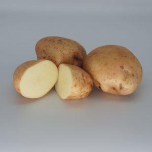 Kerr's Pink 2020 The Potato Shop