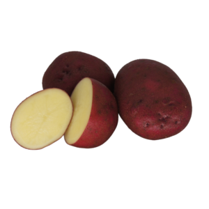 Red Duke of York 2021 The Potato Shop