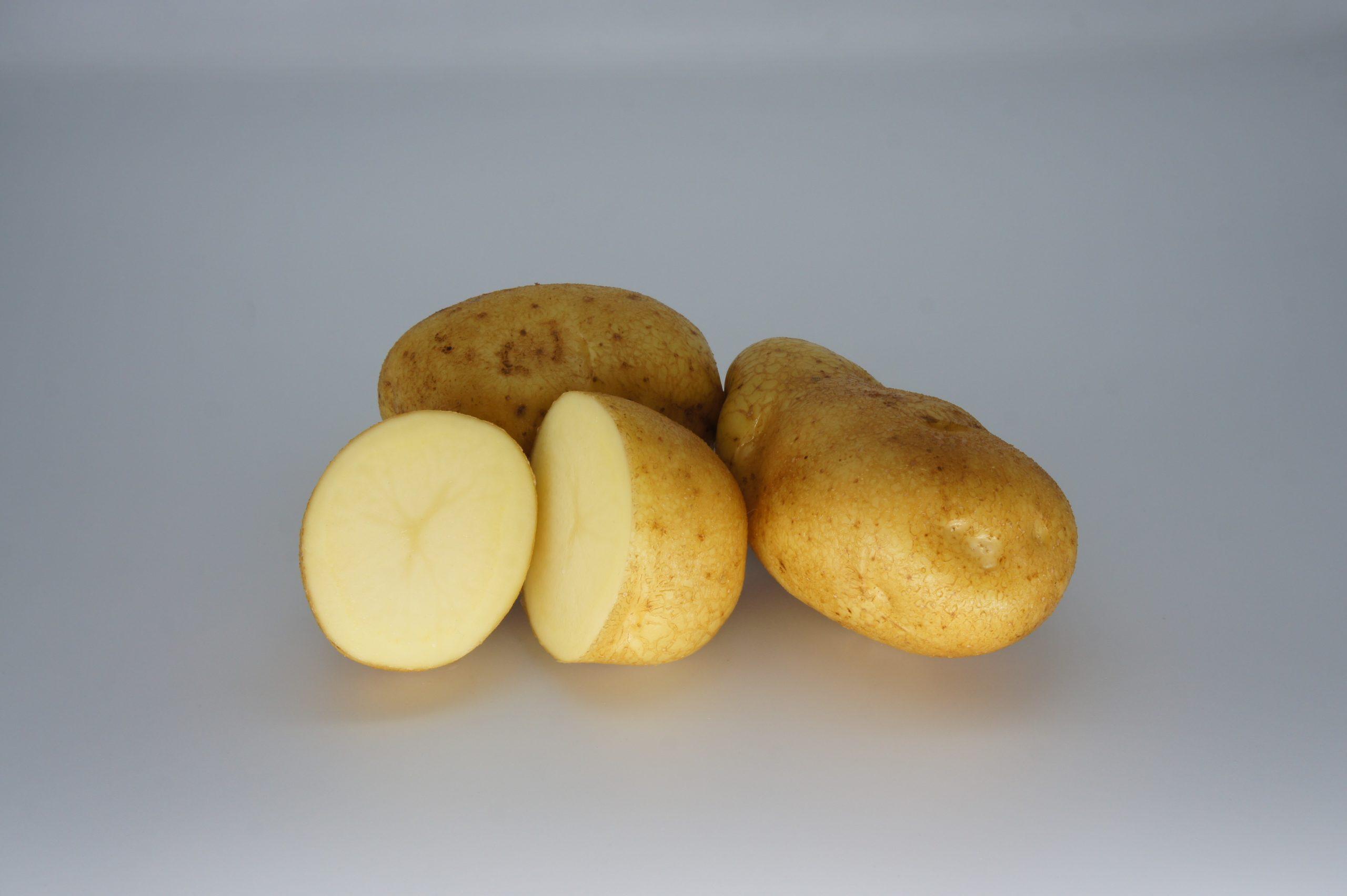Wilja 2020 The Potato Shop