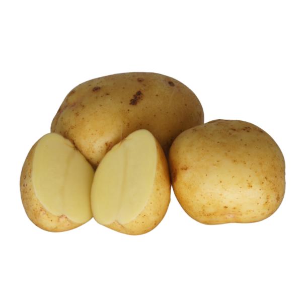Yukon Gold 2021 The Potato Shop