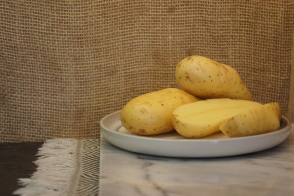 Belle de Fontenay Potatoes Harvest 2019