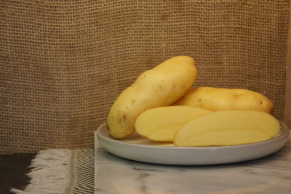 Linzer Delikatess Potatoes Harvest 2019