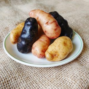 Trio of potatoes