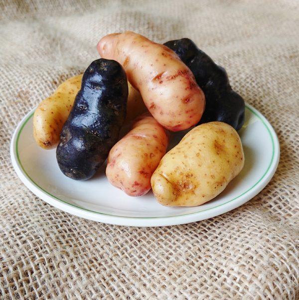 Trio of potatoes