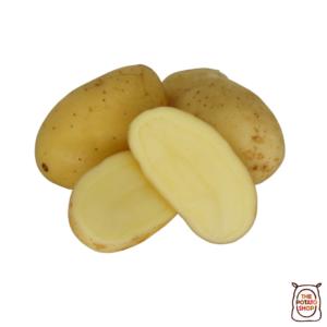 Charlotte 2020 The Potato Shop
