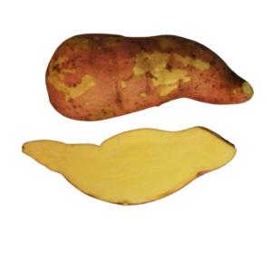 T65 2020 The Potato Shop